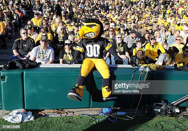 Iowa Buckeyes mascot Harky sitting on a wall during the Rose Bowl game played against the Stanford Cardinal played at the Rose Bowl in Pasadena CA
