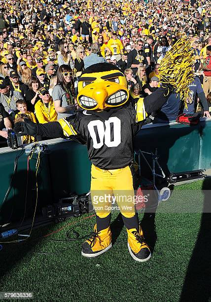 Iowa Hawkeyes mascot Harky on the field during the Rose Bowl game played against the Stanford Cardinal played at the Rose Bowl in Pasadena CA