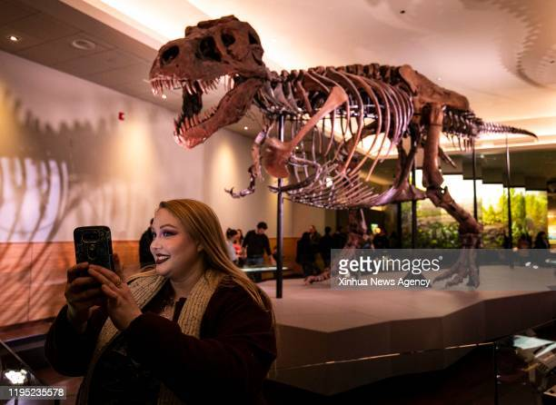 Jan. 21, 2020 -- A visitor takes a selfie with Sue, the Tyrannosaurus Rex fossil, at the Field Museum in Chicago, the United States, on Jan. 20,...