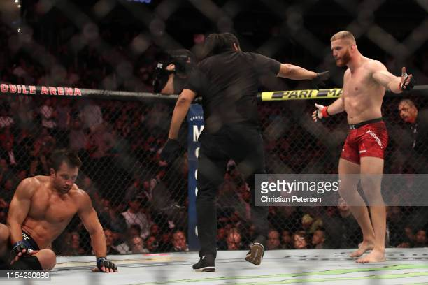 Jan Blachowicz of Poland celebrates his win over Luke Rockhold in their light heavyweight fight during the UFC 239 event at TMobile Arena on July 6...