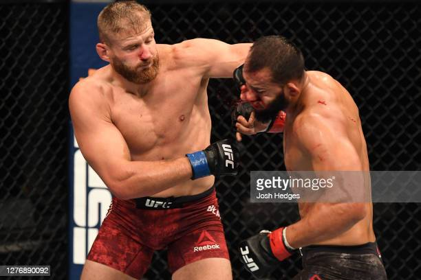 Jan Blachowicz of Poland punches Dominick Reyes in their light heavyweight championship bout during UFC 253 inside Flash Forum on UFC Fight Island on...