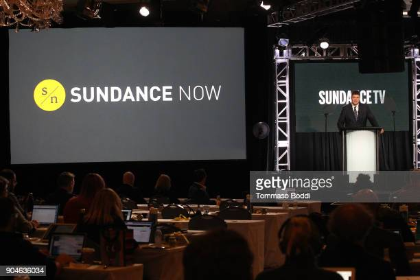 Jan Diedrichsen general manager Sundance/Sundance Now speaks onstage during the AMC portion of the 2018 Winter Television Critics Association Press...
