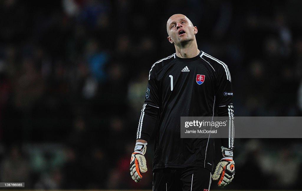 Slovakia v Russia - EURO 2012 Qualifier