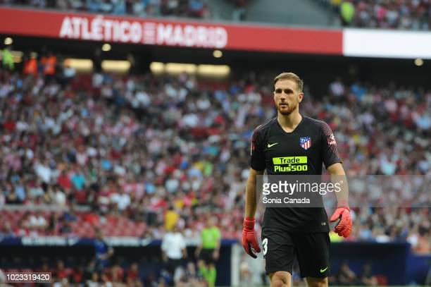 Jan Oblak #13 of Atletico de Madrid during the La Liga match between Club Atletico Madrid and Rayo Vallecano at Wanda Metropolitano on August 25 2018...