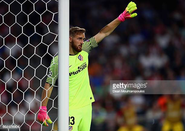 Jan Oblak of Atletico Madrid looks on during the UEFA Champions League Group D match between PSV Eindhoven and Club Atletico de Madrid at Philips...