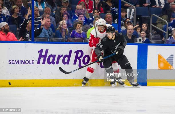 Jan Rutta of the Tampa Bay Lightning skates against Tyler Bertuzzi of the Detroit Red Wings during the third period at Amalie Arena on March 9 2019...