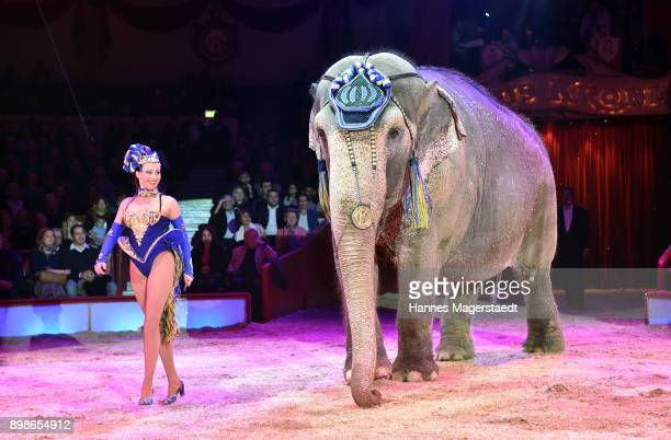 Jana LaceyKrone performs with an elephant during Circus Krone celebrates premiere of 'In Memoriam' at Circus Krone on December 25 2017 in Munich...
