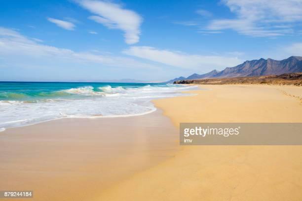 playa de parque jandía natual con agua turquioise increíble - beach fotografías e imágenes de stock