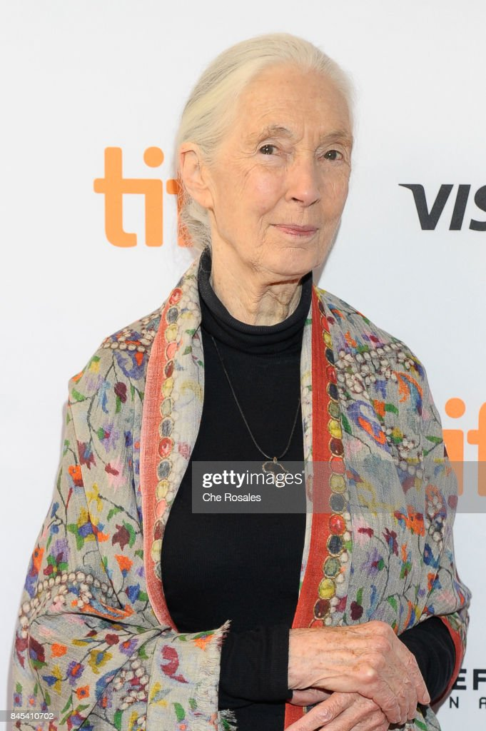 Jane Goodal arrives at Winter Garden Theatre on September 10, 2017 in Toronto, Canada.