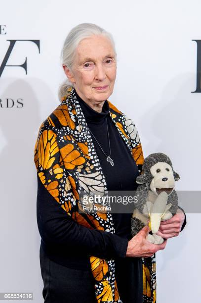 Jane Goodall attends the 2017 DVF Awards at United Nations on April 6, 2017 in New York City.