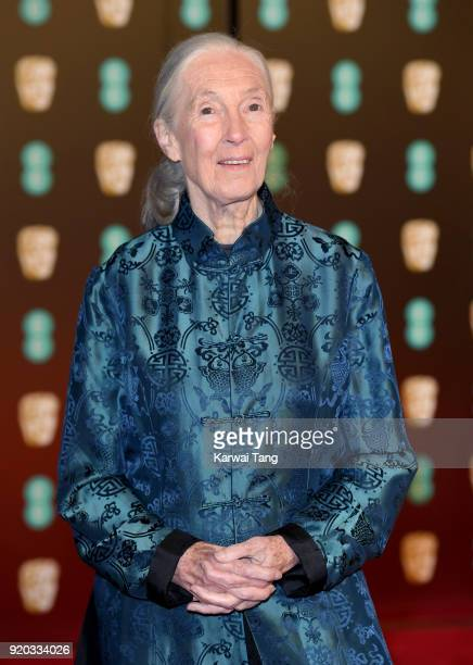 Jane Goodall attends the EE British Academy Film Awards held at the Royal Albert Hall on February 18 2018 in London England