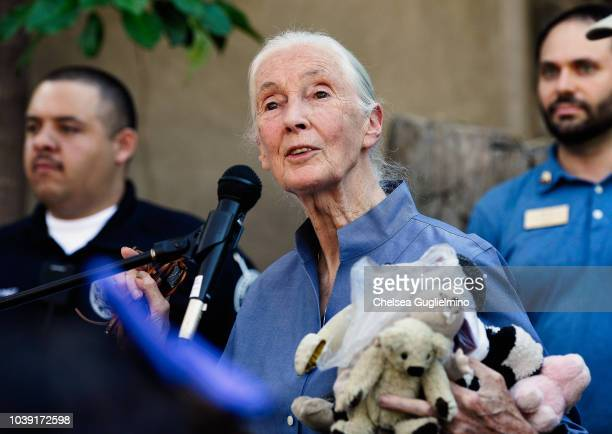 Jane Goodall attends the Los Angeles Zoo hosts Jane Goodall Institute's Roots Shoots Day of Peace at Los Angeles Zoo on September 23 2018 in Los...