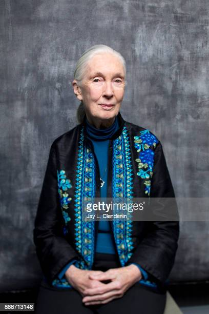 Jane Goodall is photographed for Los Angeles Times on October 9 2017 in Los Angeles California PUBLISHED IMAGE CREDIT MUST READ Jay L Clendenin/Los...