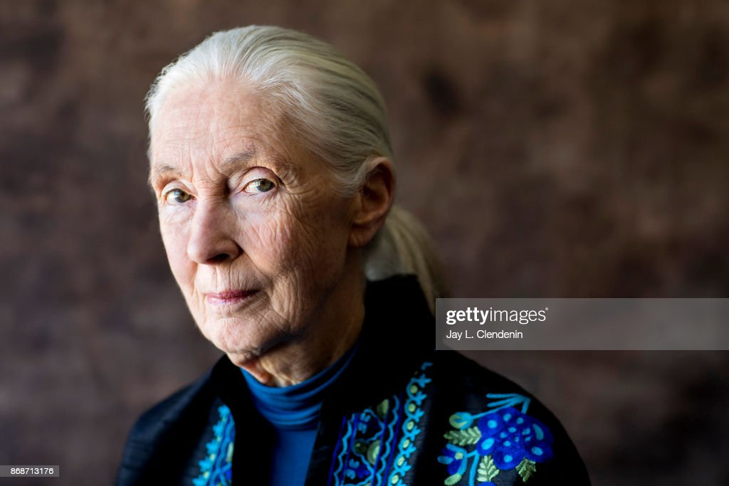 Brett Morgen and Jane Goodall, Los Angeles Times, October 24, 2017