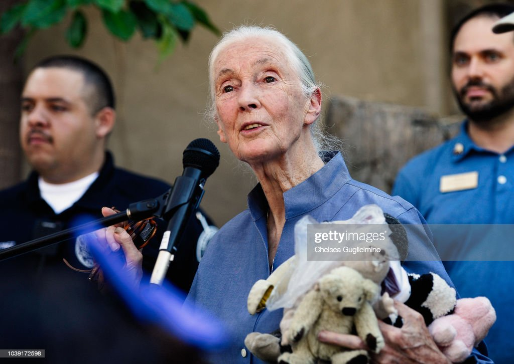 The Los Angeles Zoo Hosts Jane Goodall Institute's Roots & Shoots Day Of Peace