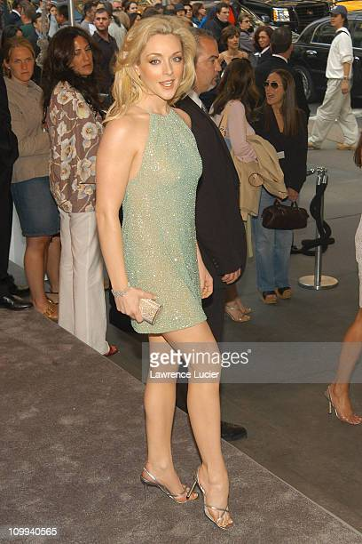 Jane Krakowski in Michael Kors during The 2003 CFDA Fashion Awards Arrivals at New York Public Library in New York City New York United States