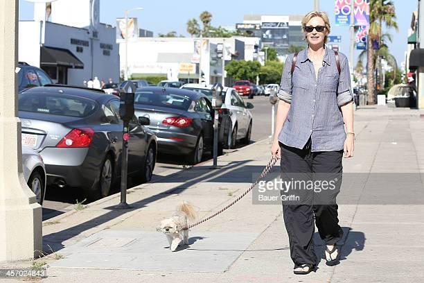 Jane Lynch is seen walking her dog on July 25 2013 in Los Angeles California