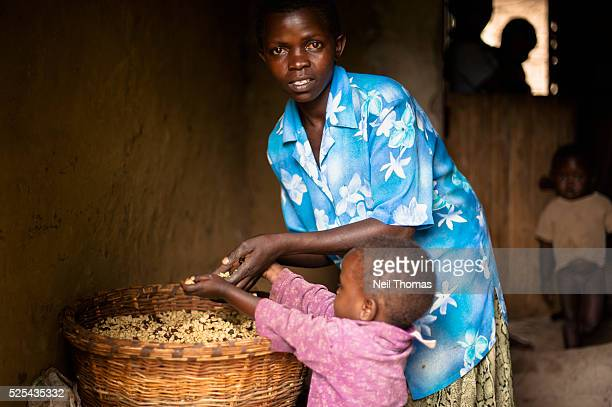 Jane Wangwiri sifts through her basket of coffee beans she produced with the aid of a microfinance loan Microfinance has become an important tool in...