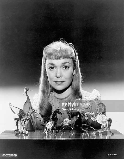 1950 Jane Wyman starred as the timid and crippled girl in the film version of Tennessee Williams' The Glass Menagerie Directed by Irving Rapper and...