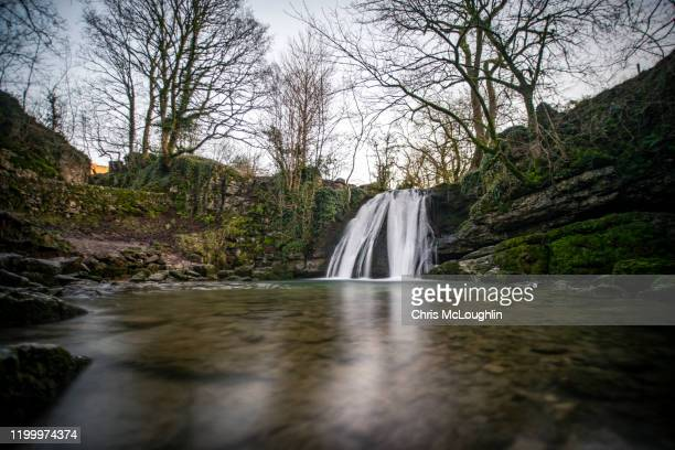 janet's foss waterfall in the yorkshire dales national park - limestone pavement stock pictures, royalty-free photos & images