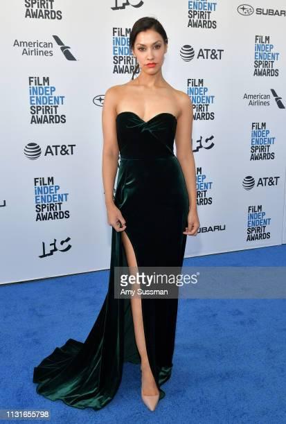 Janina Gavankar attends the 2019 Film Independent Spirit Awards on February 23 2019 in Santa Monica California