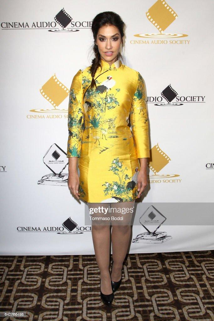53rd Annual Cinema Audio Society Awards - Arrivals