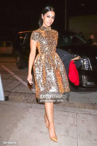 Janina Gavankar is seen on February 10 2019 in Los Angeles California