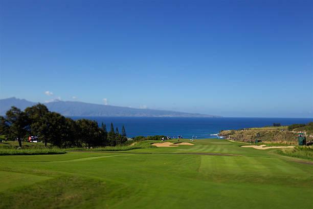 GOLF: JAN 07 PGA - Hyundai Tournat of Champions - First Round ...