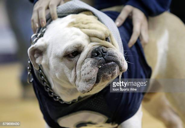 Jack mascot of Georgetown during a men's Big East basketball match at Verizon Center in Washington DC Georgetown defeated DePaul 7463