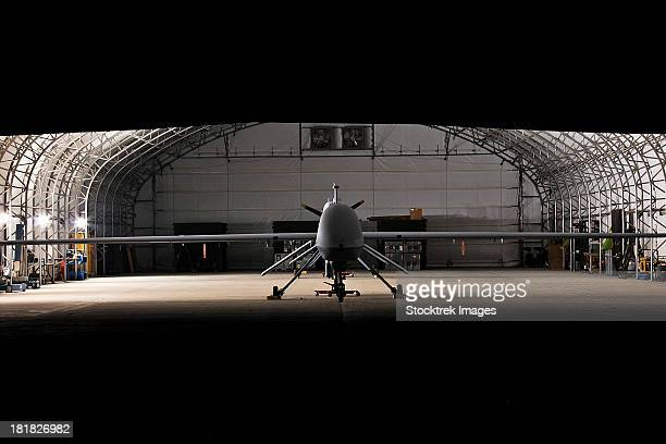 January 12, 2010 - An MQ-1C Sky Warrior unmanned aerial vehicle is parked in a hangar at Camp Taji, Iraq.