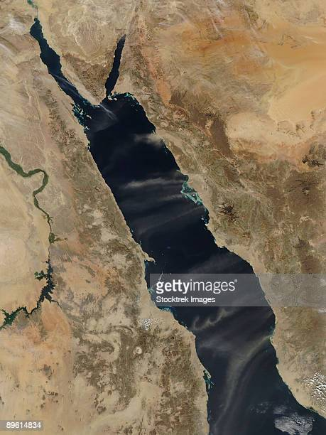 January 14, 2009 - Dust plumes over the Red Sea.