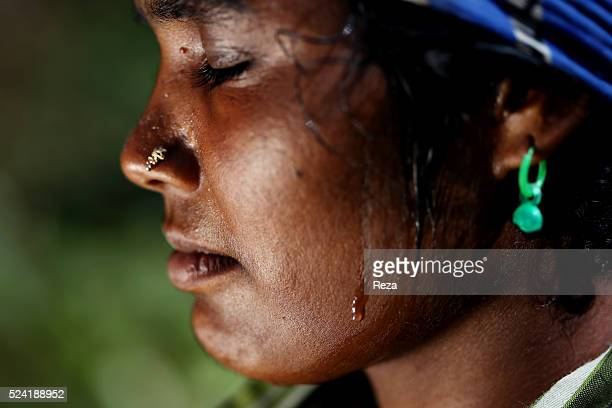 January 2013 Coffee plantation Pombolakku Kodagu District Virajpet Karnataka State India Face marked by a rigorous labor of a seasonal workers in the...