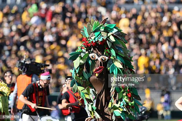 during the Rose Bowl Game between the Stanford Cardinal and the Iowa Hawkeyes at the Rose Bowl in Pasadena CA