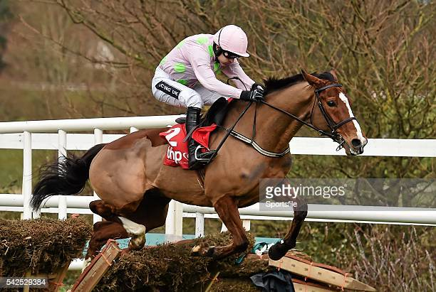 24 January 2016 Faugheen with Ruby Walsh up clear the last on their way to winning the BHP Insurances Irish Champion Hurdle Leopardstown Racecourse...