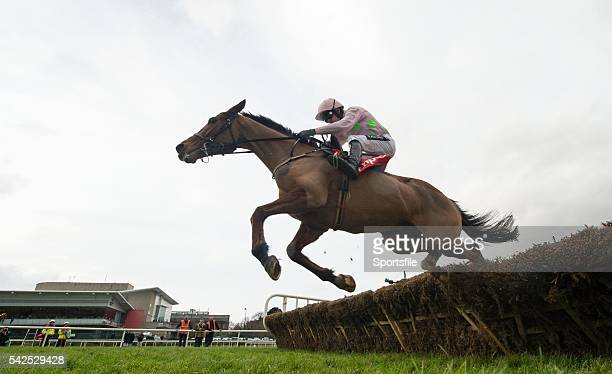 24 January 2016 Faugheen with Ruby Walsh up clears the last on their way to winning the BHP Insurances Irish Champion Hurdle Leopardstown Racecourse...