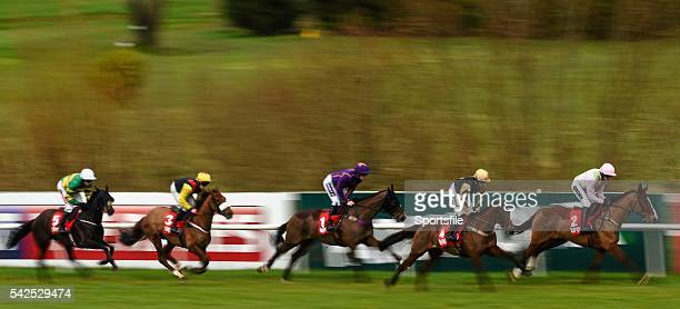 24 January 2016 Faugheen with Ruby Walsh up leads Nichols Canyon with Paul Townend up followed by Arctic Fire with Danny Mullins up first time round...