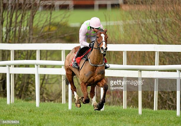 24 January 2016 Faugheen with Ruby Walsh up on their way to the last and winning the BHP Insurances Irish Champion Hurdle Leopardstown Racecourse...