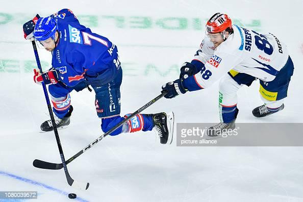 Mannheim Ice Hockey