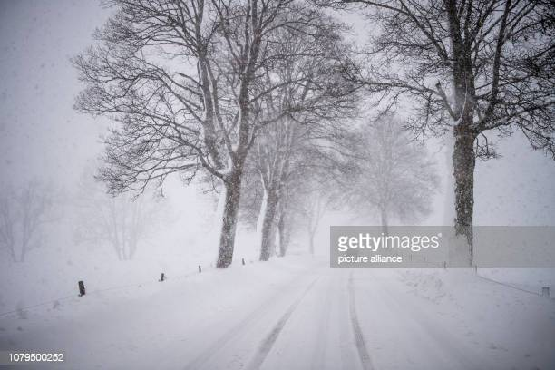 A car drives over a snow blown country road The district of Miesbach has triggered a disaster alarm due to heavy snowfalls Photo Lino Mirgeler/dpa