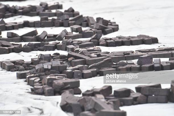 Coal is part of a performance by the environmental protection organisation Greenpeace at the Federal Chancellery The reason for the action is the...