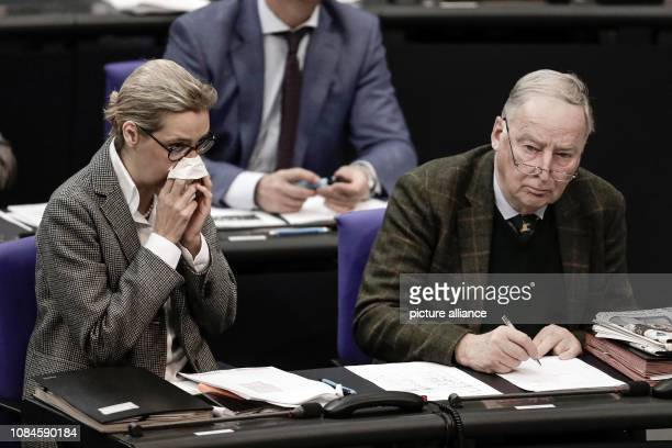 The cochairmen of the AfD parliamentary group Alice Weidel and the second cochairman of the parliamentary group Alexander Gauland sit in the plenary...
