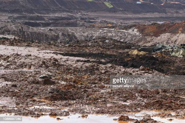 Panoramic view onto a muddy area after the rupture of a dam near the municipality Brumadinho According to media reports several bodies have been...