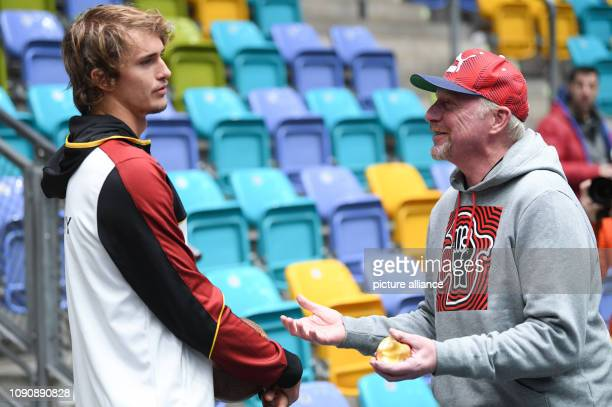 Tennis Davis Cup before the first round match Germany Hungary The German tennis player Alexander Zverev and Boris Becker henchman of the German...