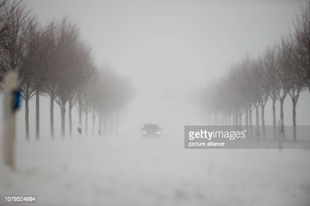 09 January 2019 SaxonyAnhalt Güntersberge Snow drifts drive new snow onto the road Since the morning snow has fallen in the Harz Mountains even at...