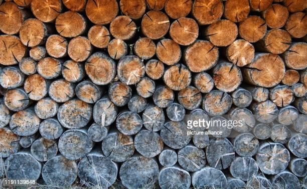 January 2020, Bavaria, Krün: Stored wood has taken on different colours. Photo: Lino Mirgeler/dpa