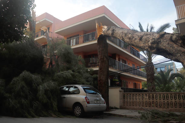 ESP: Stormy Weather On Mallorca