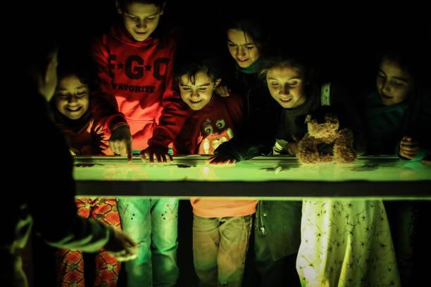 SYR: Art Exhibition In Syria