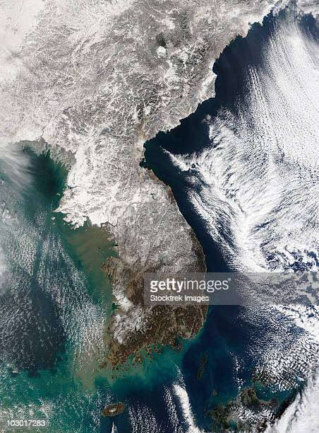 january 3, 2010 - snow in korea. - peninsula stock pictures, royalty-free photos & images