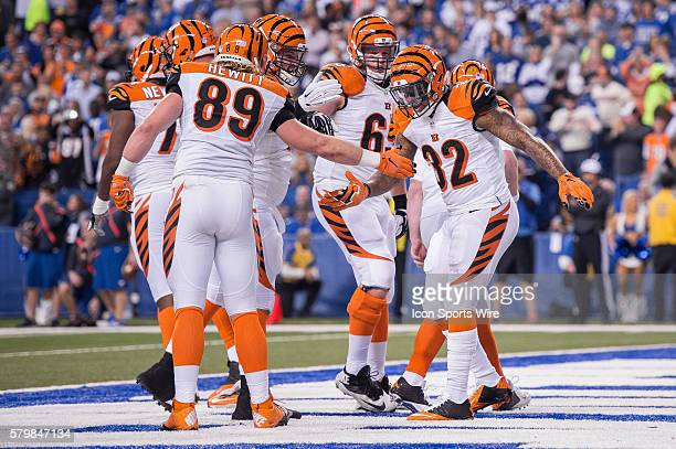 Cincinnati Bengals running back Jeremy Hill celebrates a rushing touchdown during a NFL AFC Wild Card football game between the Indianapolis Colts...
