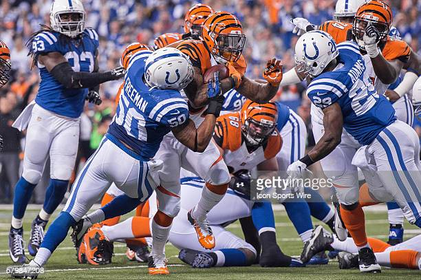 Indianapolis Colts inside linebacker Jerrell Freeman and Indianapolis Colts safety Mike Adams stop Cincinnati Bengals running back Jeremy Hill short...